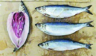 报纸做鱼制作图片步骤