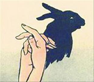 狗,狐狸,飞鸟……还记得小时候在灯影下舞弄双手创造出的动物世界吗?