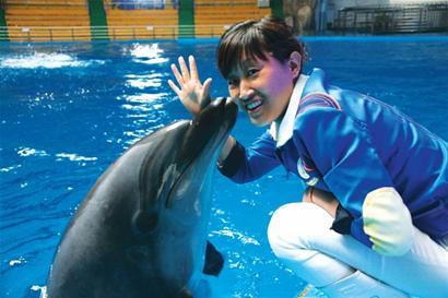 壁纸 动物 海底 海底世界 海洋馆 鲸鱼 水族馆 410_273