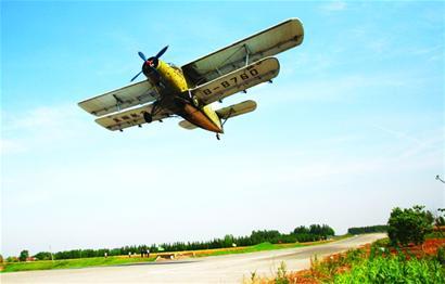 我市将启动大规模飞机防治来消灭美国白蛾