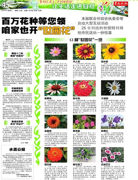 """百万花种等您领咱家也开""""世园花""""-青岛报纸电子版图片"""