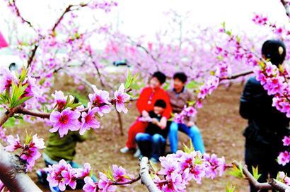 开春吃顿鲜美农家宴 崂山是很多青岛人